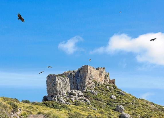 Die Finca Ternelles bei Pollença ist wegen ihrer landschaftlichen Schönheit sowie der Burgruine Castell del Rei als Ausflugsziel