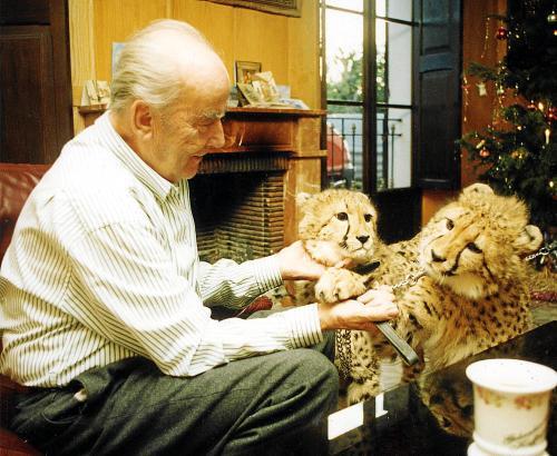 Hasso Schützendorf liebte wilde Tiere und hielt einige, wie diese beiden Geparden.