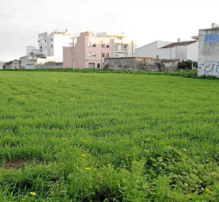 Auf diesem Grundstück zwischen Autobahn und Carretera Llucmajor sollen 750 Wohneinheiten entstehen.