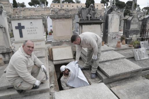 Totengräber bei der Arbeit.