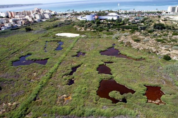 Das Feuchtgebiet Ses Fontanelles mit dem Aquarium an der Playa de Palma im Hintergrund. Rechts davon soll das Einkaufszentrum en