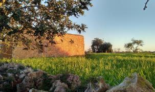 Ein Blick auf die Cala Santanyí