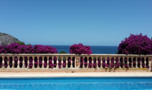 Blauer Himmel, blaues Meer und die Bougainvillea leuchtet in ihrem markenten Violett