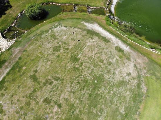 Nicht schön: So sieht in diesen Tagen das Grün des 18. Lochs von Golf de Andratx aus.