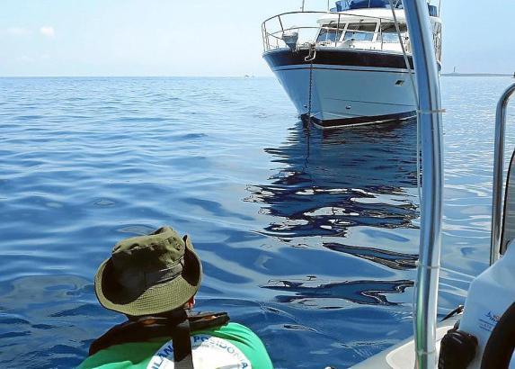 Zum Schutz der Posidionia sind auf den Balearen 15 Kontrollboote im Einsatz.