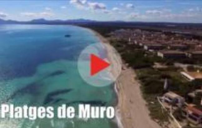 Das Video wurde von der Facebook-Gemeinschaft Mallorca Blue erstellt.