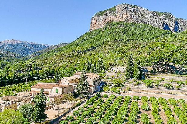 Rund um die Finca Son Berga im Örtchen Alaró am Südhang des Tramuntana-Gebirges besucht Karl Ploberger eindrucksvolle Zitrusplan