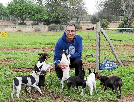 Züchter Miquel Durán Gayà arbeitet hauptberuflich als Polizist in Palma, seine Leidenschaft gilt aber den Rateros..