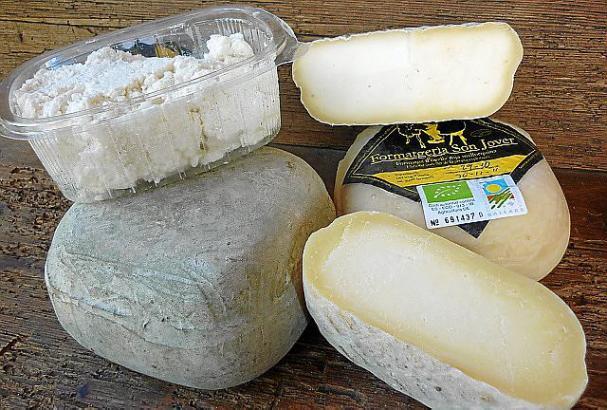 Vom Frischkäse biz zum würzigen Hartkäse reicht Seguís Produktpalette.