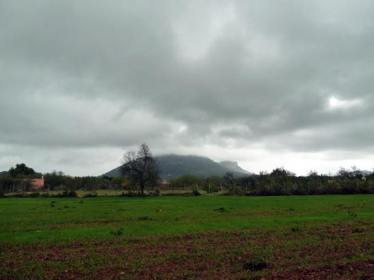 Vor allem den Nordosten der Insel erwartet ein graues Wochenende.