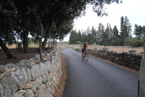 Rechts und links an vielen Straßen: Trockensteinmauern.