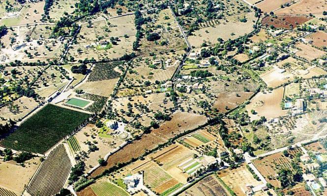 Mallorca-Landschaft samt Fincas.