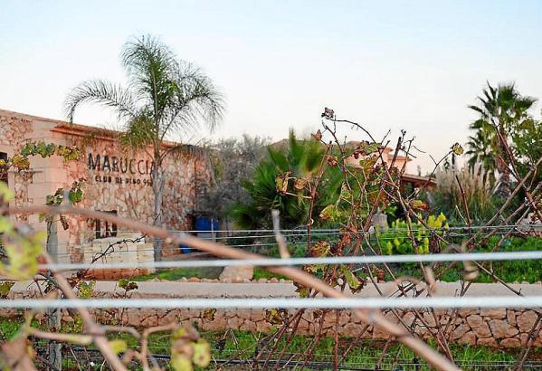 Die Bodega Maruccia befindet sich bei Llucmajor.