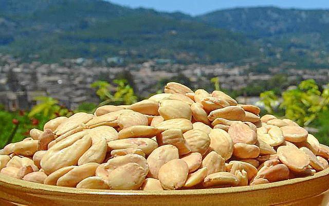 Mallorcas Mandeln gehören laut Experten zu den besten der Welt.