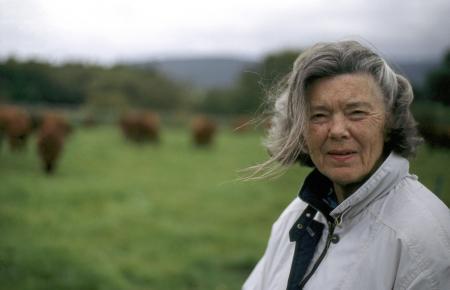 Das ZDF hat mehr als 100 Filme produziert, die auf Geschichten von Rosamunde Pilcher basieren.