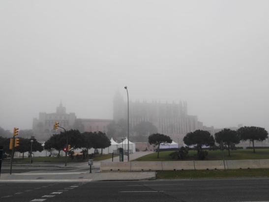 So sah es am Freitag aus. Auch das ganze Wochenende über ist mit Morgennebel zu rechnen.
