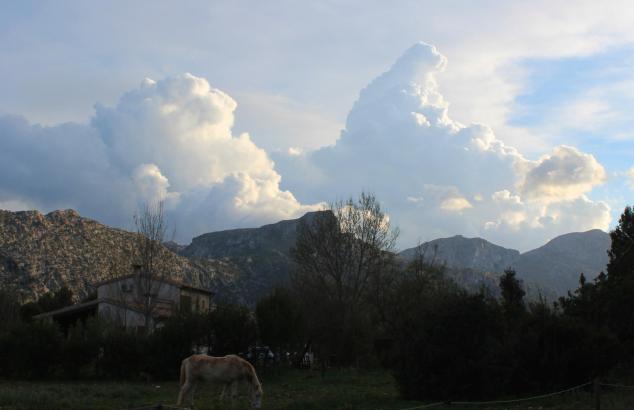 Mallorca-Stillleben mit Wolken und Pferd.