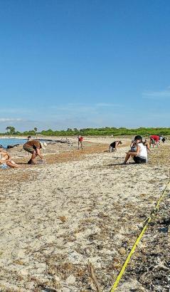 Freiwillige Helfer halten den Strand sauber.