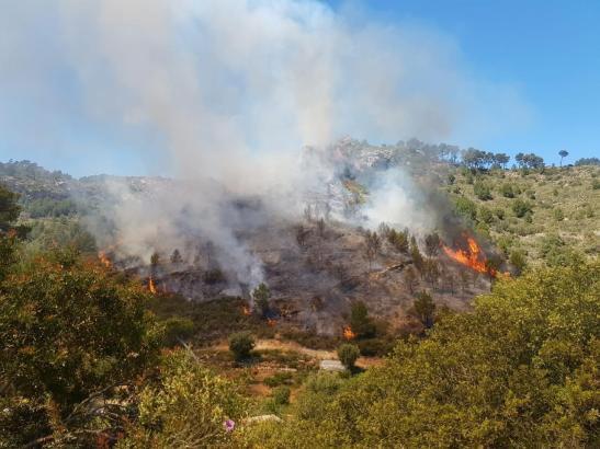 Das Feuer brach am Freitagmittag aus.