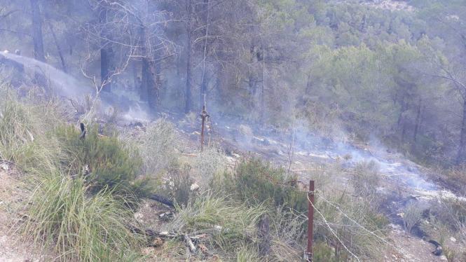 Waldbrand auf Mallorca Ende April.