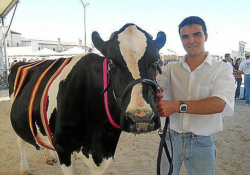 Auch die schönste Kuh wird gekürt.