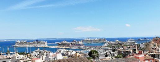 Am Samstag war im Hafen von Palma de Mallorca gut was los.