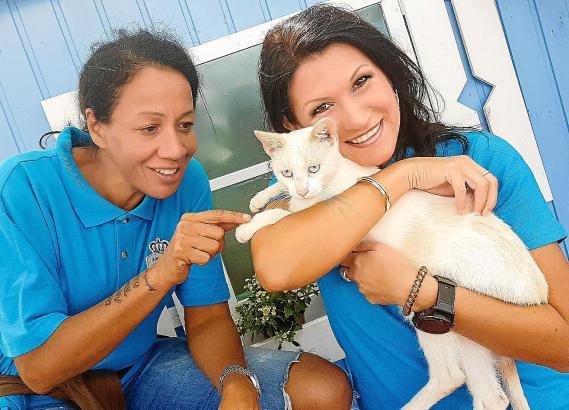 """Gemeinsammit Farah de Tomi (l.) von """"Animal Police"""" setzt sich Sängerin Antonia aus Tirol für mallorquinische Tiere ein."""
