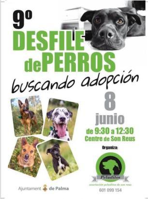 Die Tierschau in der Auffangstation Son Reus findet am Samstag, 8. Juni, von 9.30 bis 12.30 statt.