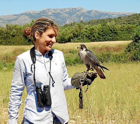 Sechs Falkner arbeiten auf Mallorca. Laura Wrede ist die einzige Frau darunter.