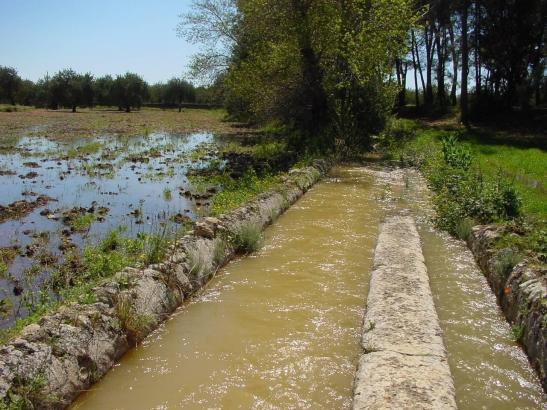 Die Font de Mestre Pere versorgt Palma schon seit maurischen Zeiten mit Trinkwasser.