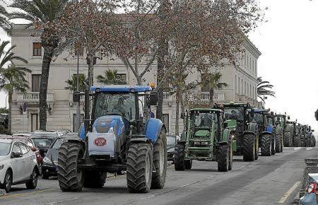 Bauern sind besorgt über die dank Trockenheit schlechte Ernte in diesem Jahr.