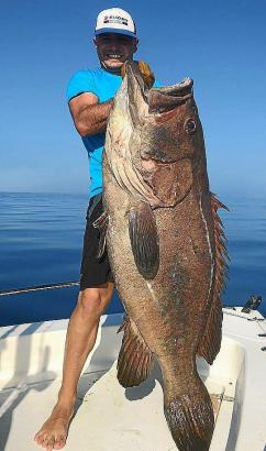 Was für eine enorme Kreatur!