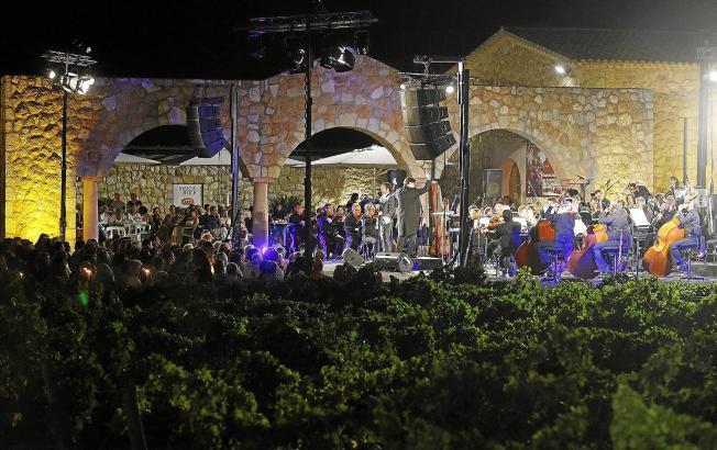 Das Konzert in den Weinbergen ist ein beliebter Sommerevent.