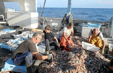 Auf Mallorca können Urlaubern den Fischern behilflich sein.