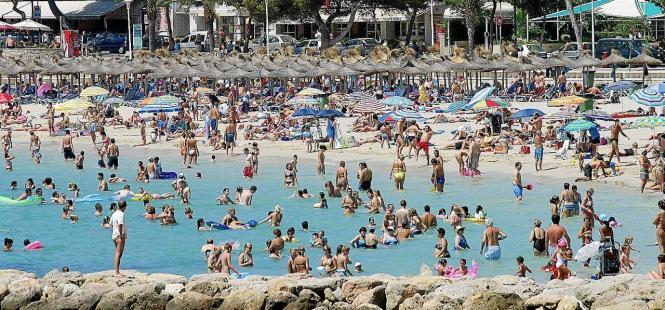 Die Studie nahm den Strand von Palmira unter die Lupe und rechnete die Ergebnisse dann hoch.