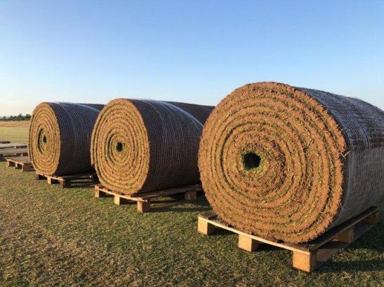 Der neue Rasen für das Estadi Balear ist eingetroffen.