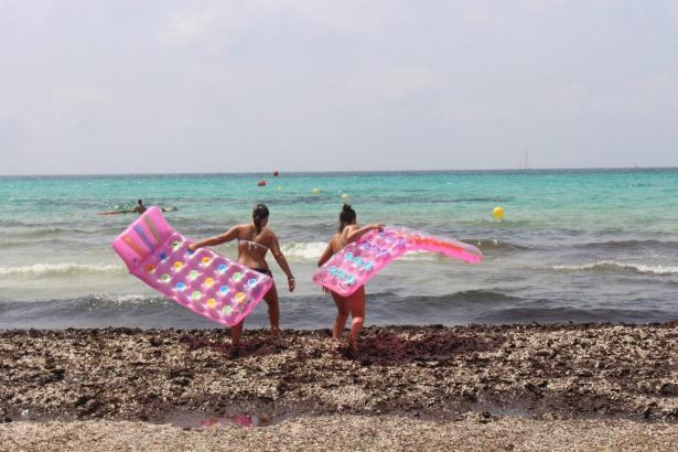Ungewohntes Bild am Traumstrand Es Trenc: Statt weißem karibikartigen Sand muss man derzeit über eine ungewöhnliche Menge Algen steigen, um ins Meer zu kommen.