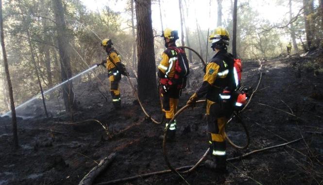 Um 15 Uhr brachte die Feuerwehr den Waldbrand bei Esporles unter Kontrolle.