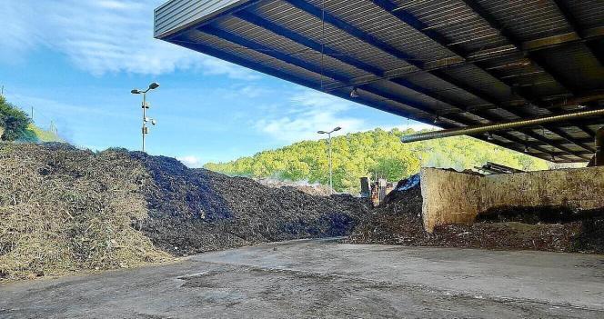Wegen einer Kompostieranlage stinkt es an der Costa de la Calma.