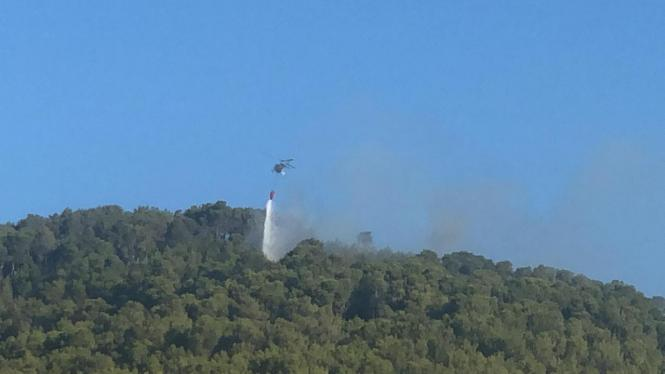 Seit Sonntagmorgen brennt es bei Son Quint nahe Esporles. Löschteams versuchen den Brand, unter Kontrolle zu bringen.