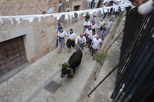Der Stier wird für die Veranstaltung mit einem Blumenkranz geschmückt.