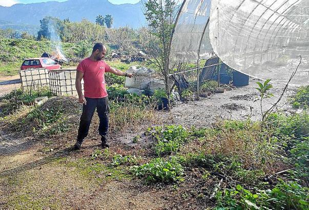 Die Anpflanzungen eines Gewächshauses wurden zerstört.