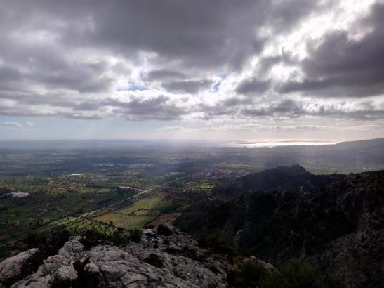 Mallorca ist derzeit so schön grün.