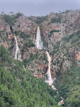 Als wäre es ein Urwald-Gebirge: Berge bei Valldemossa am Mittwoch.