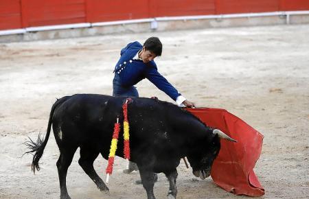 Solche Bilder wollen die Stierkampfgegner nicht mehr sehen.