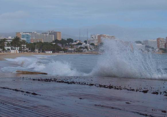 Es gibt kaum etwas Schöneres, als die Wellen zu bestaunen.