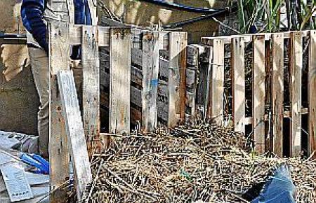 Der Kompost wird regelmäßig mit feinem Wasserstrahl feucht gehalten, damit er gut gedeiht.