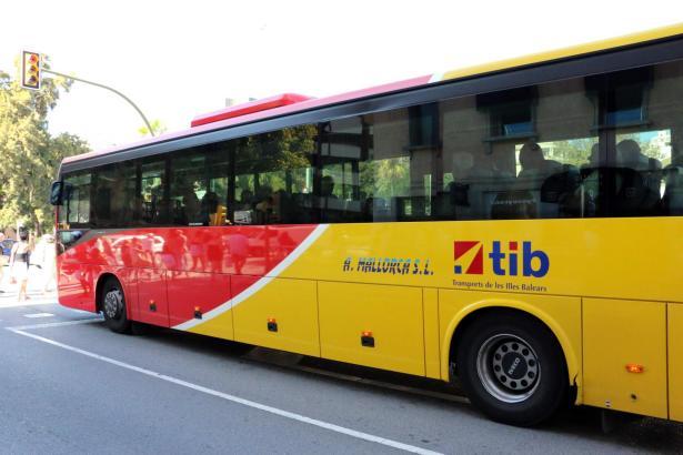 Mit den rot-gelben TIB-Bussen wird auf Mallorca der Nahverkehr von und nach Palma sowie außerhalb der Balearen-Metropole abgedeckt.