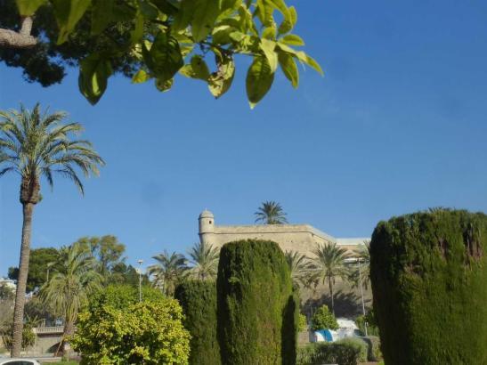 Ja ist denn schon Frühling? Palma de Mallorca im Februar 2020.