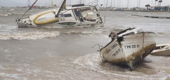 So sah es kurz nach dem Sturm in Port de Pollença aus.